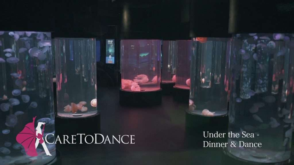 CareToDance Under the Sea Social Dancing & Dinner Event, CareToDance | Private & Group Dance Classes and Lessons in Sydney NSW